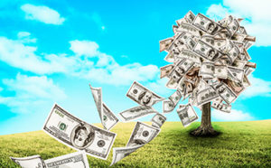 Money Tree for investing
